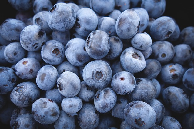 blueberries-690072_640