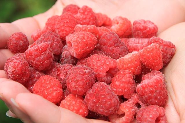 raspberries-88491_640